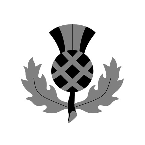 Thistle-Bagpipe